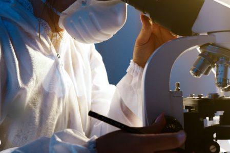 5 Bereiche der medizinischen Forschung, die die Welt verändert haben